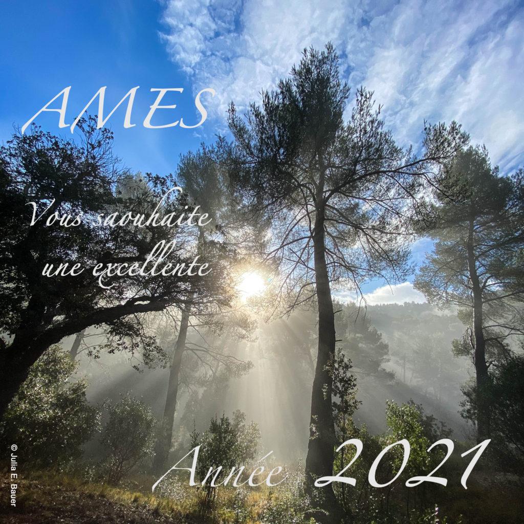 Voeux AMES 2021